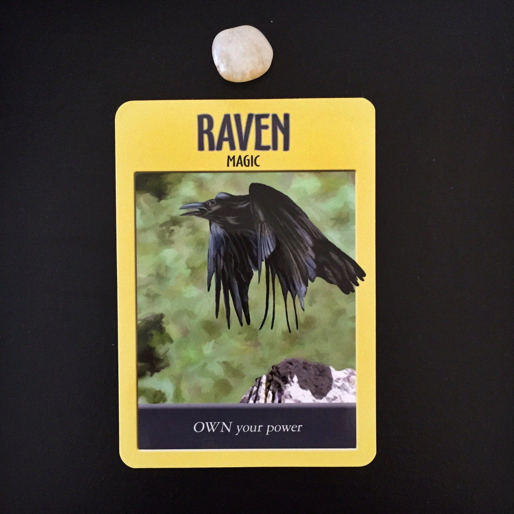 Raven Power Animal
