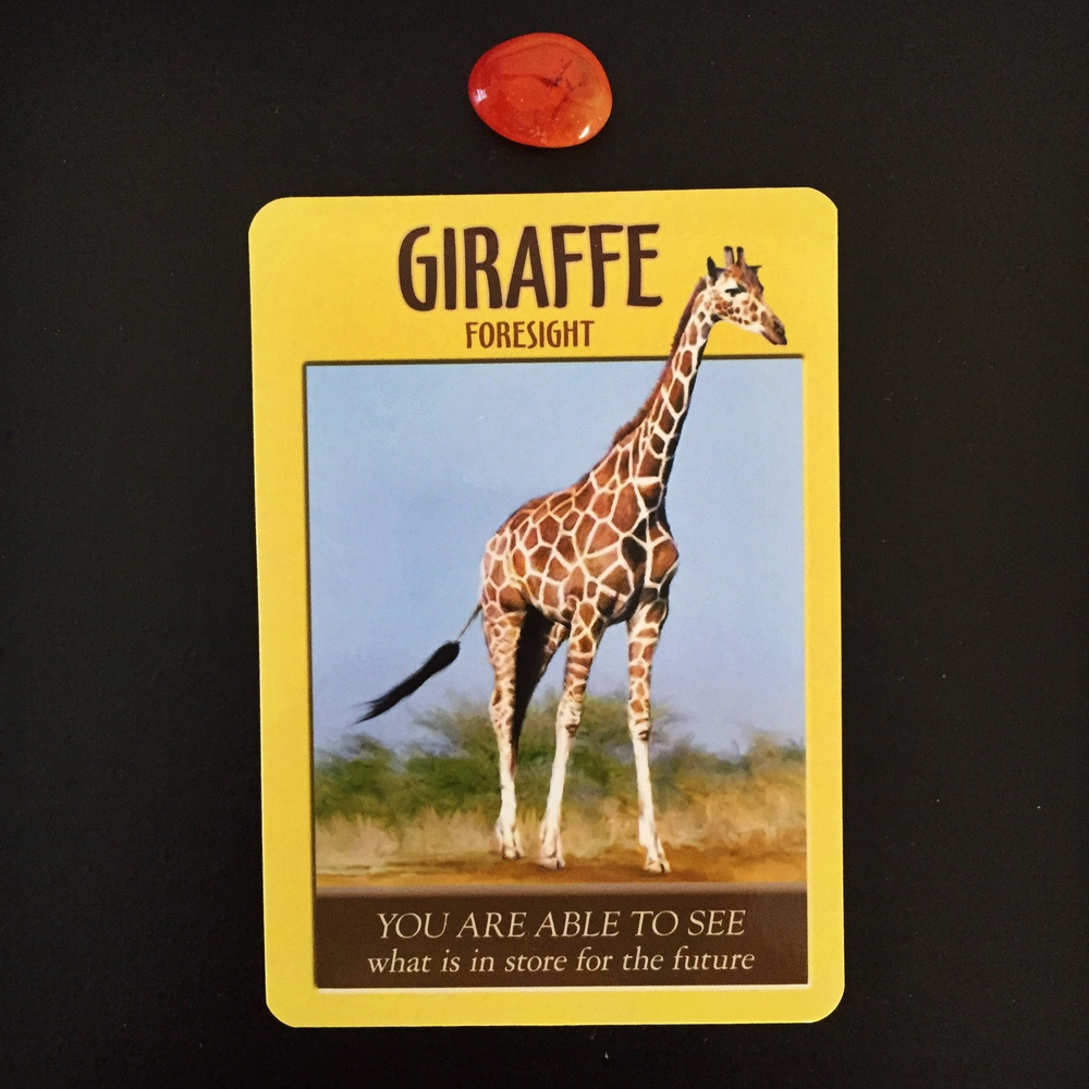 Giraffe Power Animal