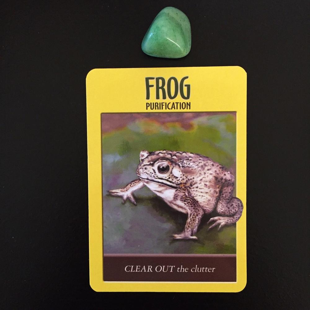 Frog Power Animal