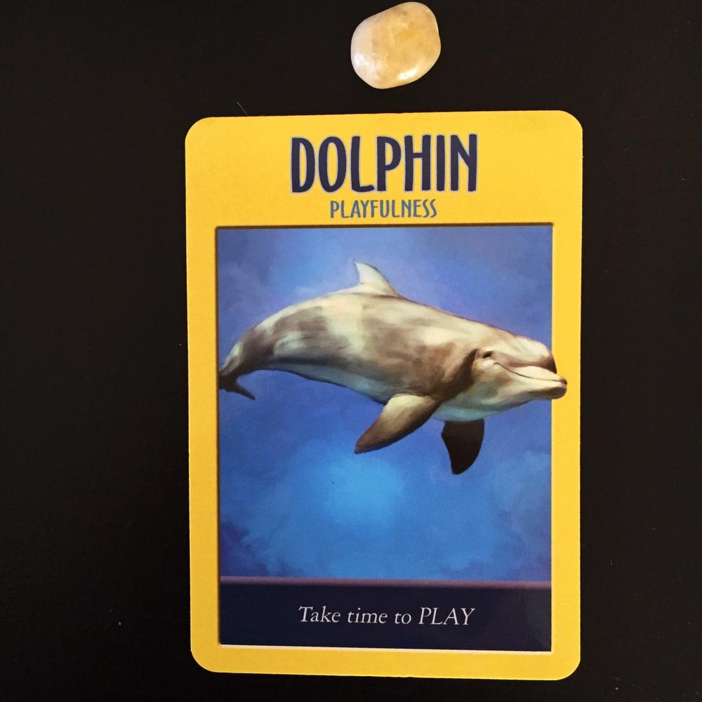 Dolphin Power Animal