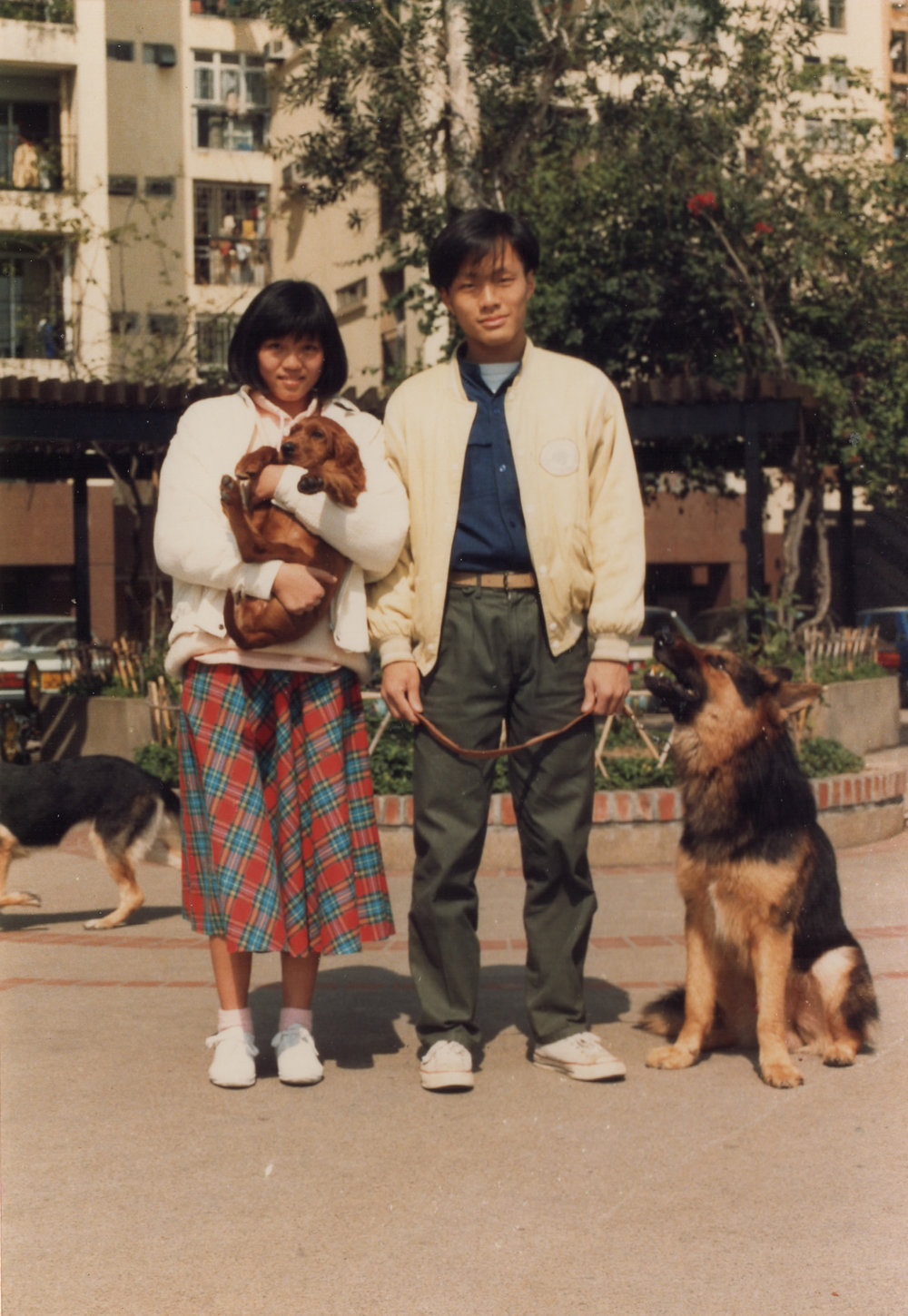 mom and dad walking dogs.jpg