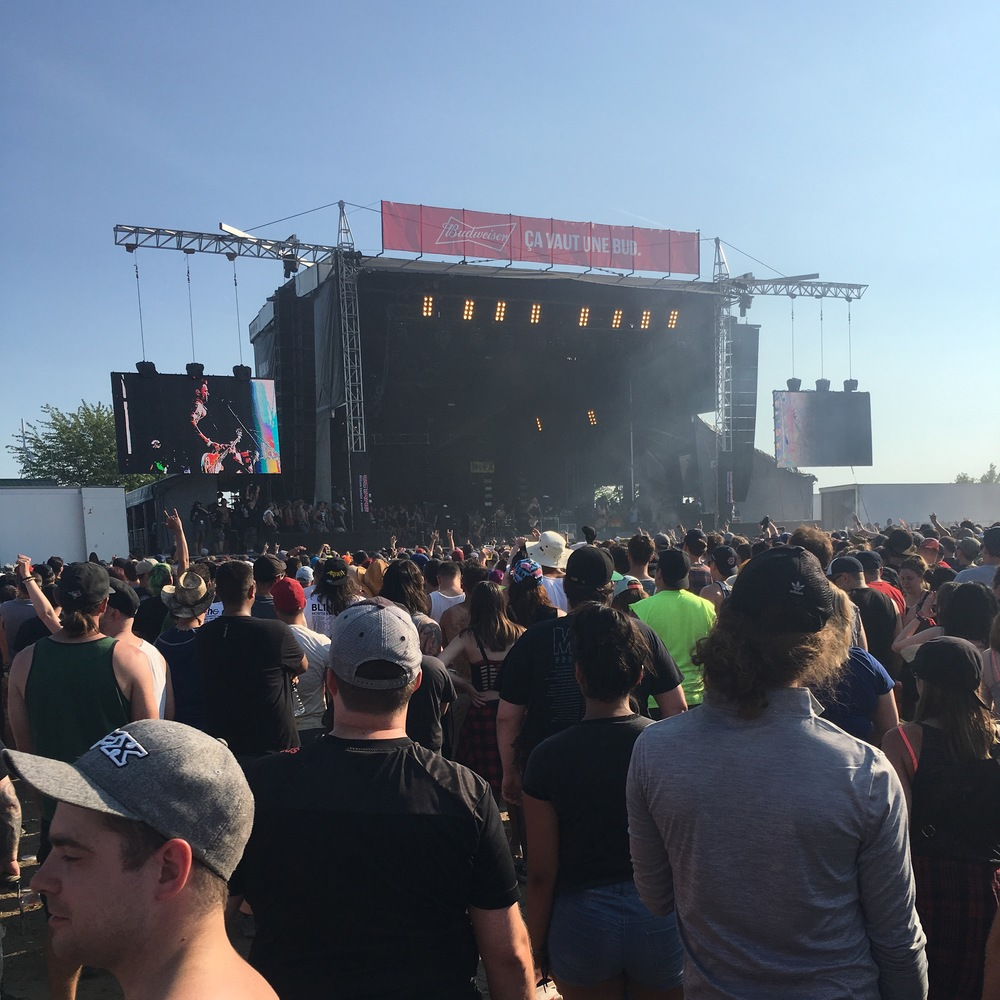 NOFX on the Budweiser stage during Amnesia Rockfest 2016 - they were my favorite performers!! I also took the pontoon with Fat Mike!