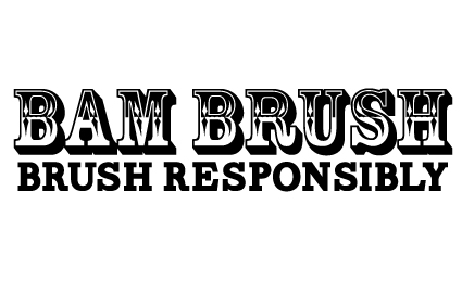 bambrush_logo_large_transparent_background.jpg