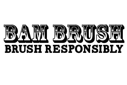 bambrush_logo_large_transparent_background.jpg