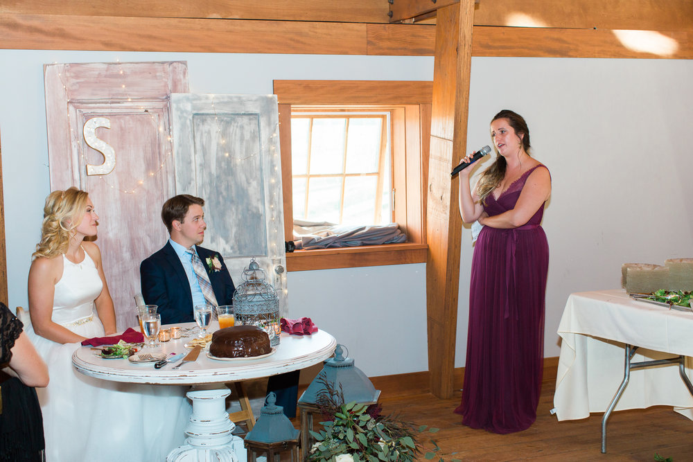 Sweeney Wedding Reception Speeches ©ASP-11.jpg