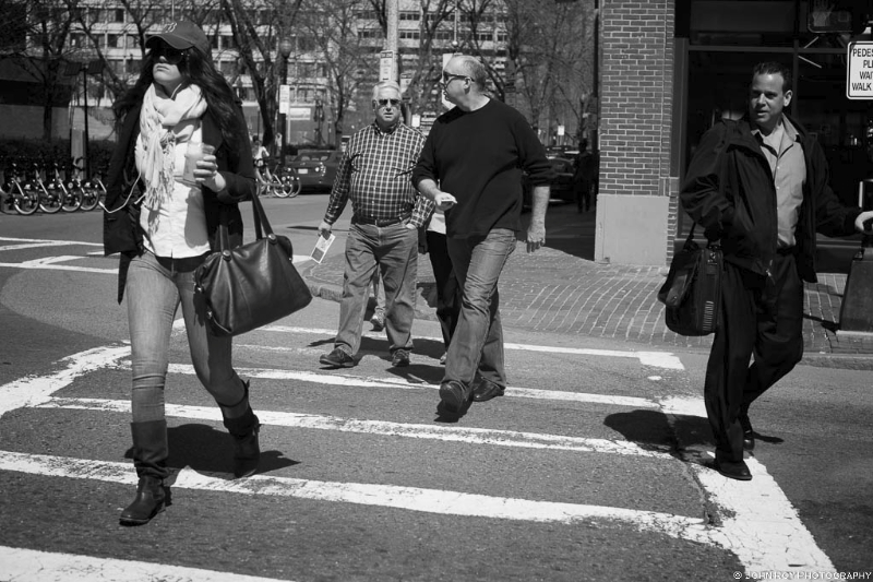 Crosswalk Study #87