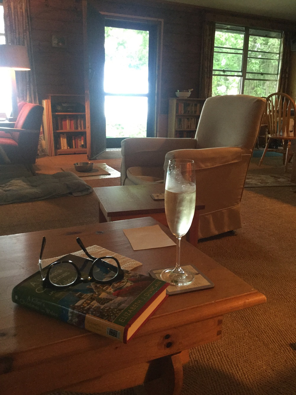 I read 4.5 detective novels and drank bubbly.