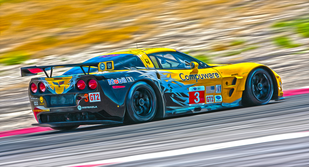 ALMS Corvette 2010
