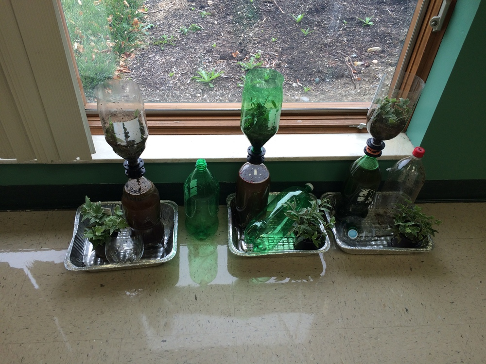 Biology And Cad Students Create Hydroponic Garden Troy Christian