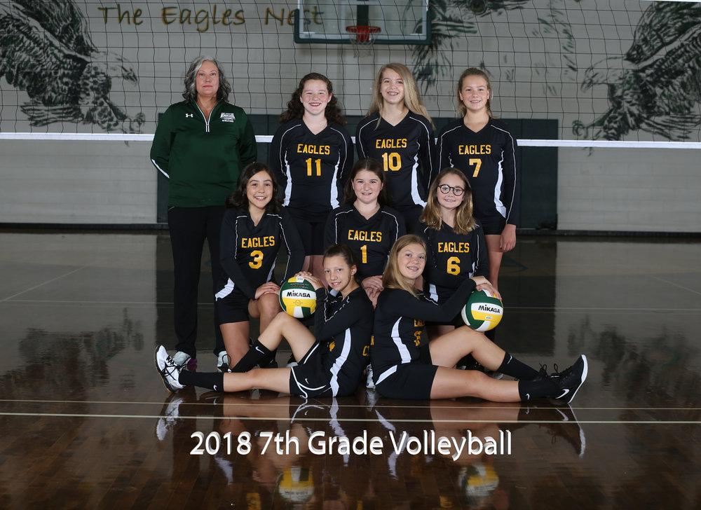 2017 Jr. High Volleyball