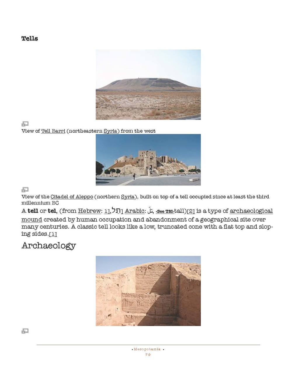 HOCE- Fertile Crescent Notes_Page_079.jpg