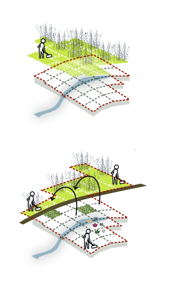 10_A_agricultureplots_growingcanopies.jpg