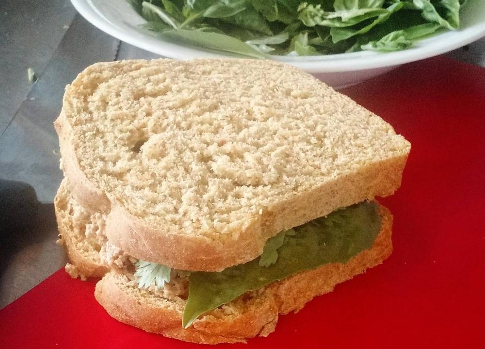 Tofu Sandwich.jpg
