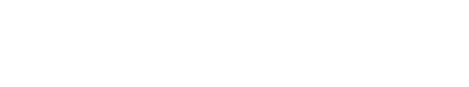 Law Office of Paul Schiffer