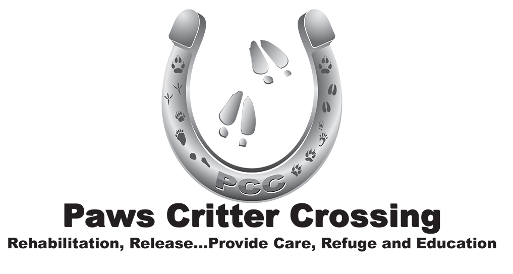 Paws Critter Crossing