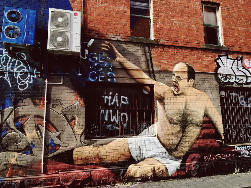 Terrene- Fitzroy Melbourne Street Art -51.jpg