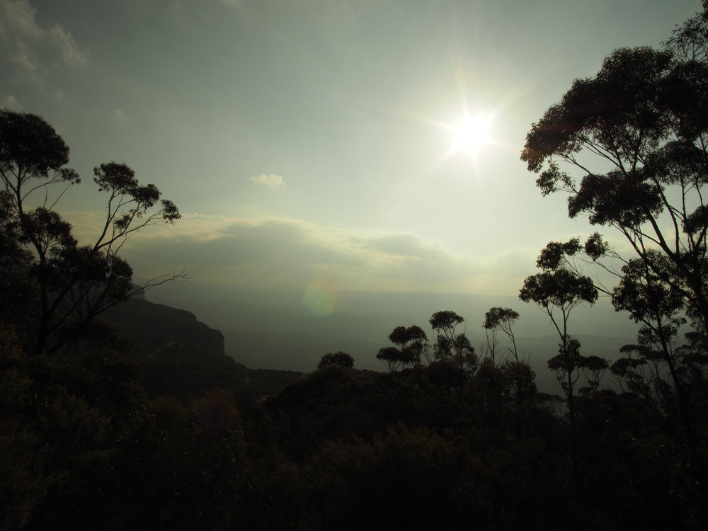 Blue Mountains Ana Petre - Terrene76.jpg