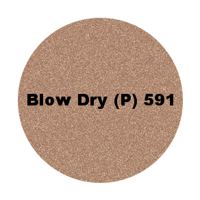 591 blow dry p.png
