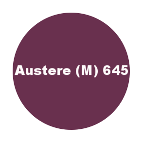 645 austere m.png