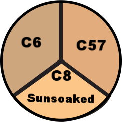 sunsoaked c6 c57 c8.png