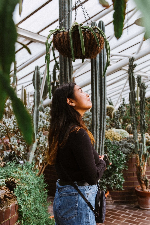 Barbican Conservatory-30.jpg