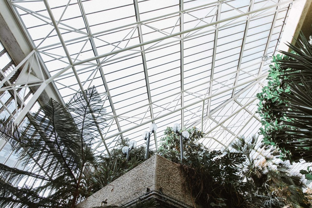 Barbican Conservatory-20.jpg