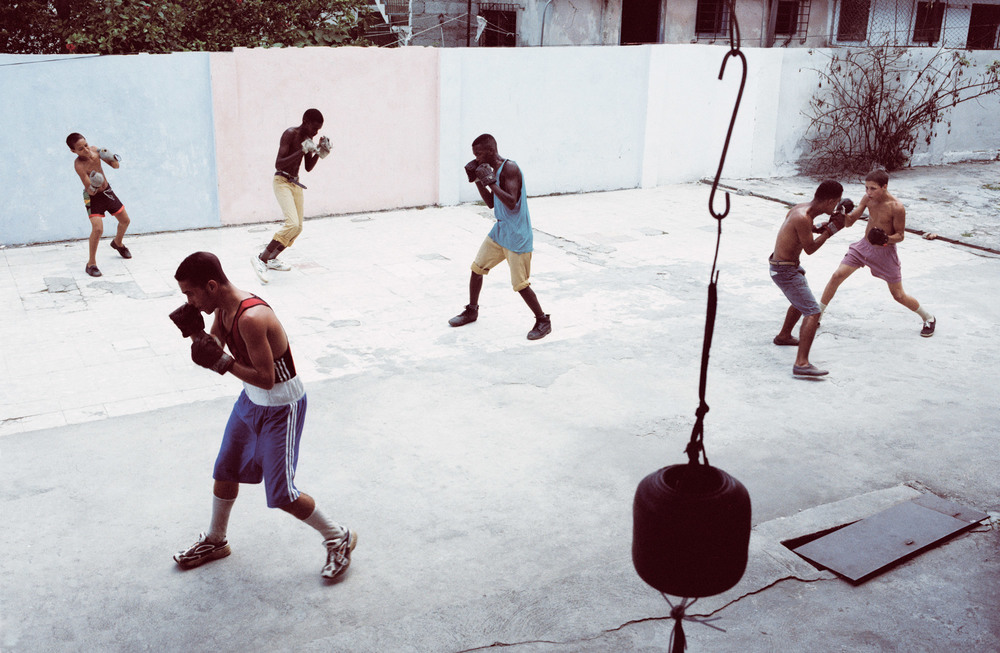 SPARRING-BOXERS-3-COLOUR.jpg