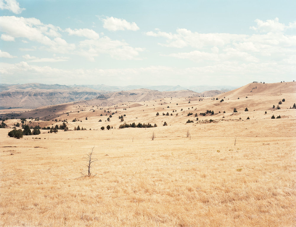 IDAHO-PLAIN.jpg