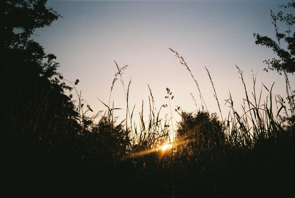 evening.jpg
