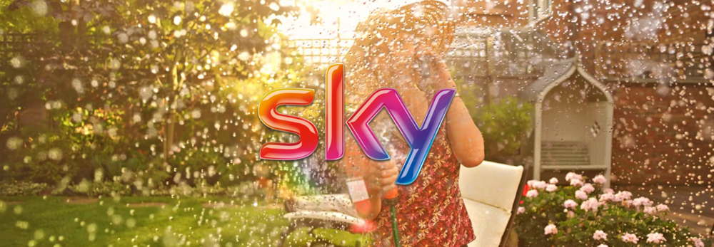 sky_life_banner.png