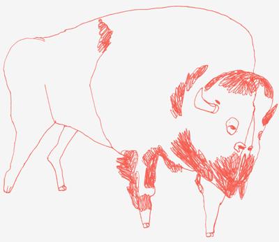 web-buffalo-2.png