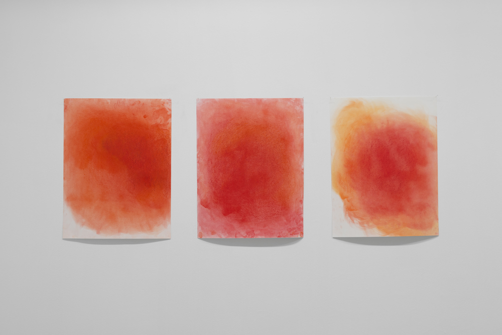 Red study I - III  (2015), dry pastel on paper Photo: Tommy Ellingsen