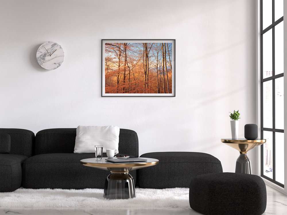 rodopifalltrees_frame_living_room.jpg