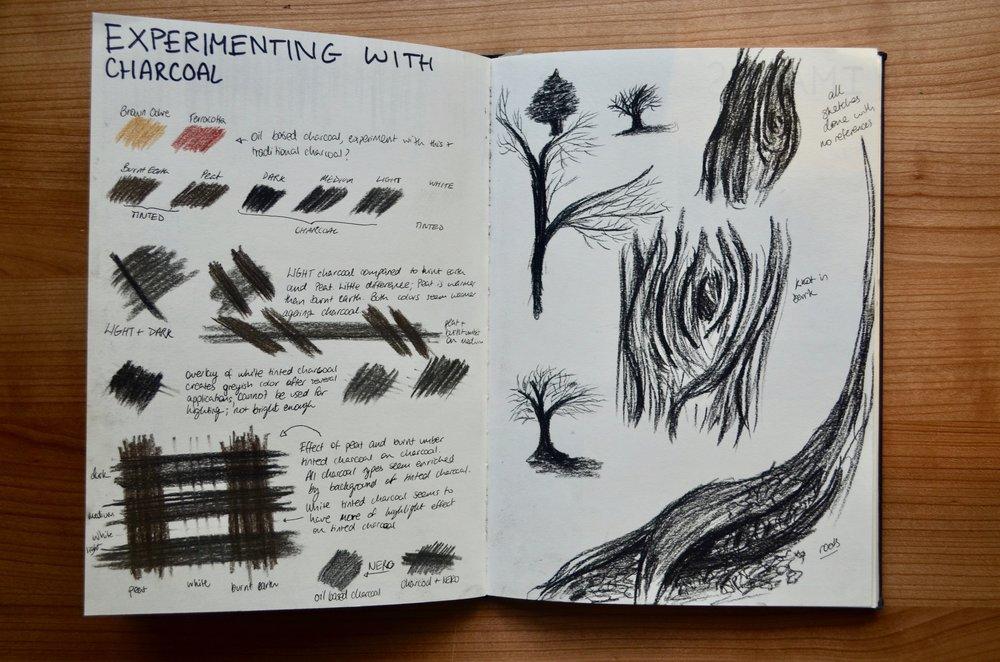 Exploring Mediums