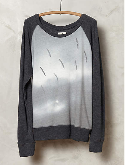 Anthropologie sweatshirt   ($107)