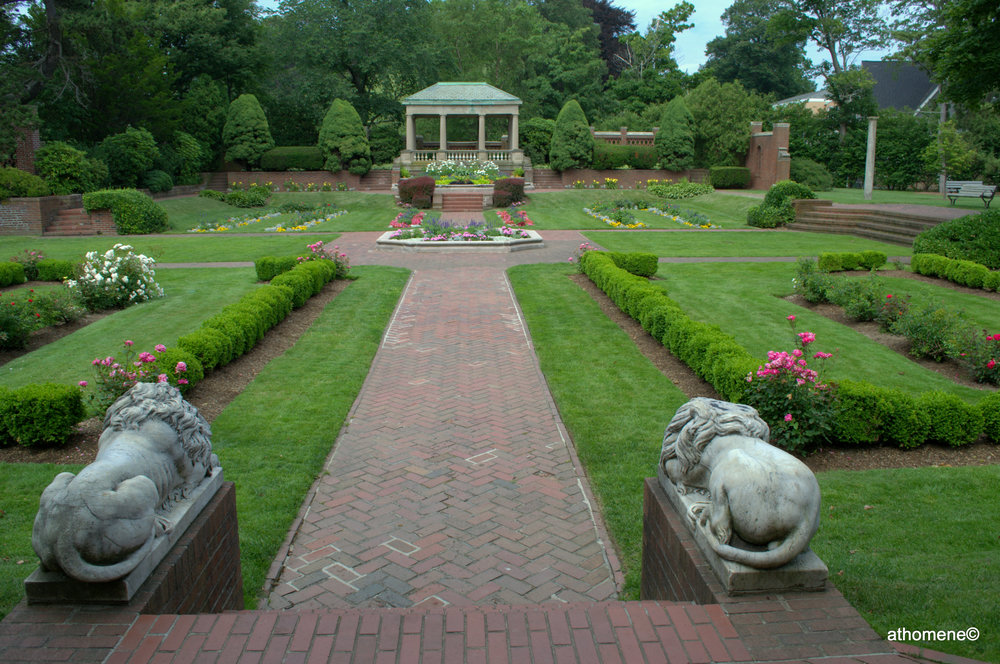 The sunken rose garden at Lynch Park did not disappoint.