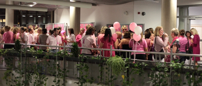 Think_Pink_Event_2009_17