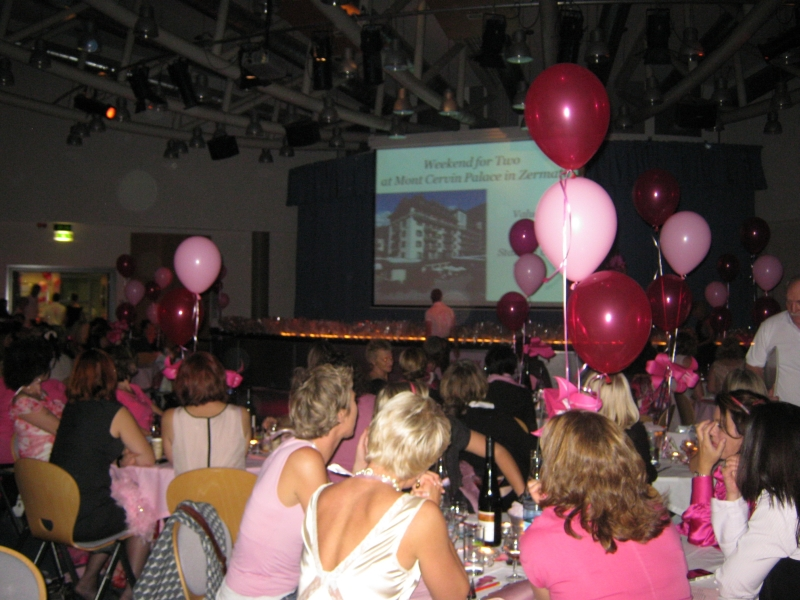 Think_Pink_Event_2010_3