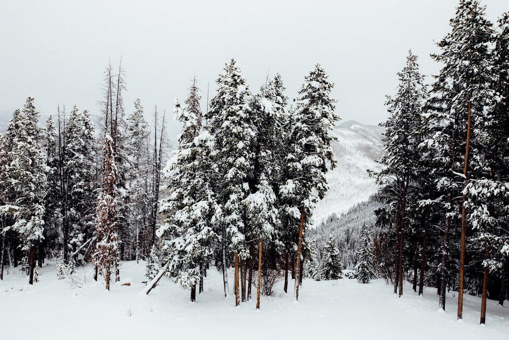 Colorado_2016-1036.jpg
