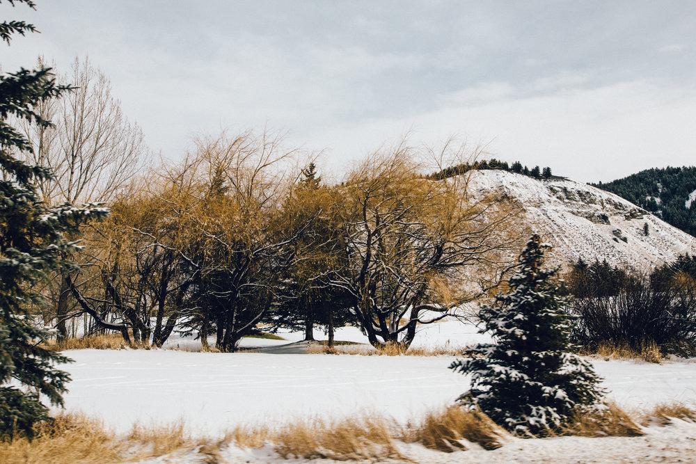 Colorado_2016-0190.jpg