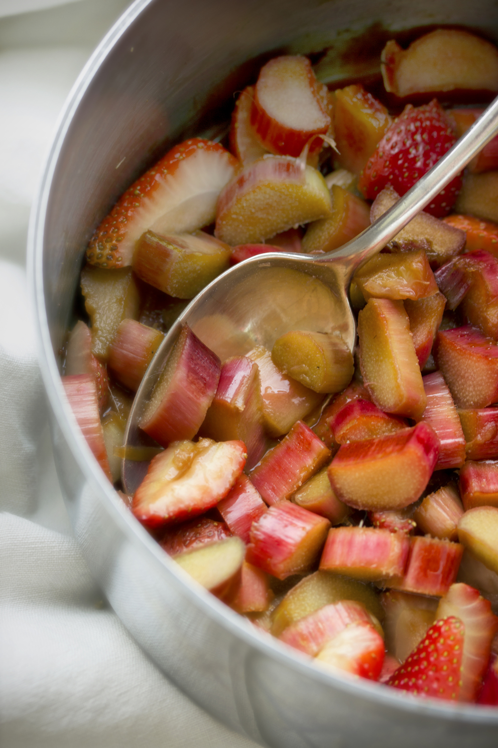 Rhubarb and Strawberries in Pot