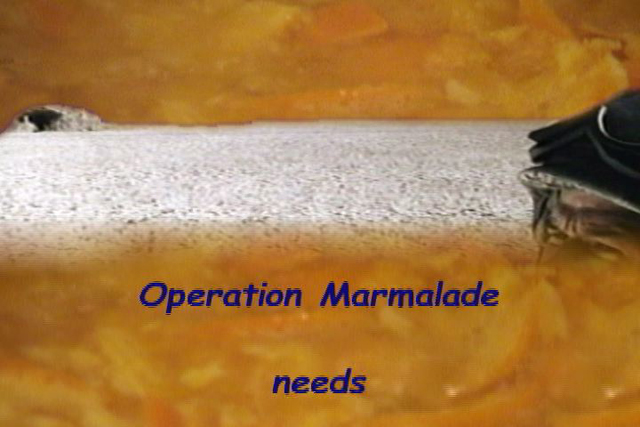 10.Operation Marmalade.Video Still copy.jpg