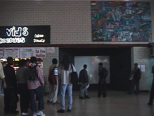 ts.installation view2.jpg