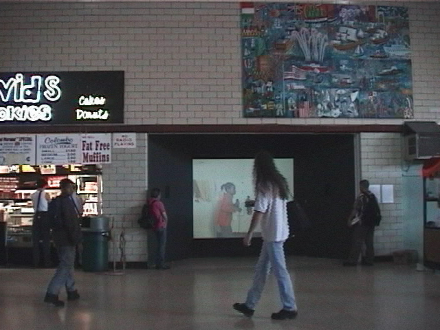 ts.installation view.jpg