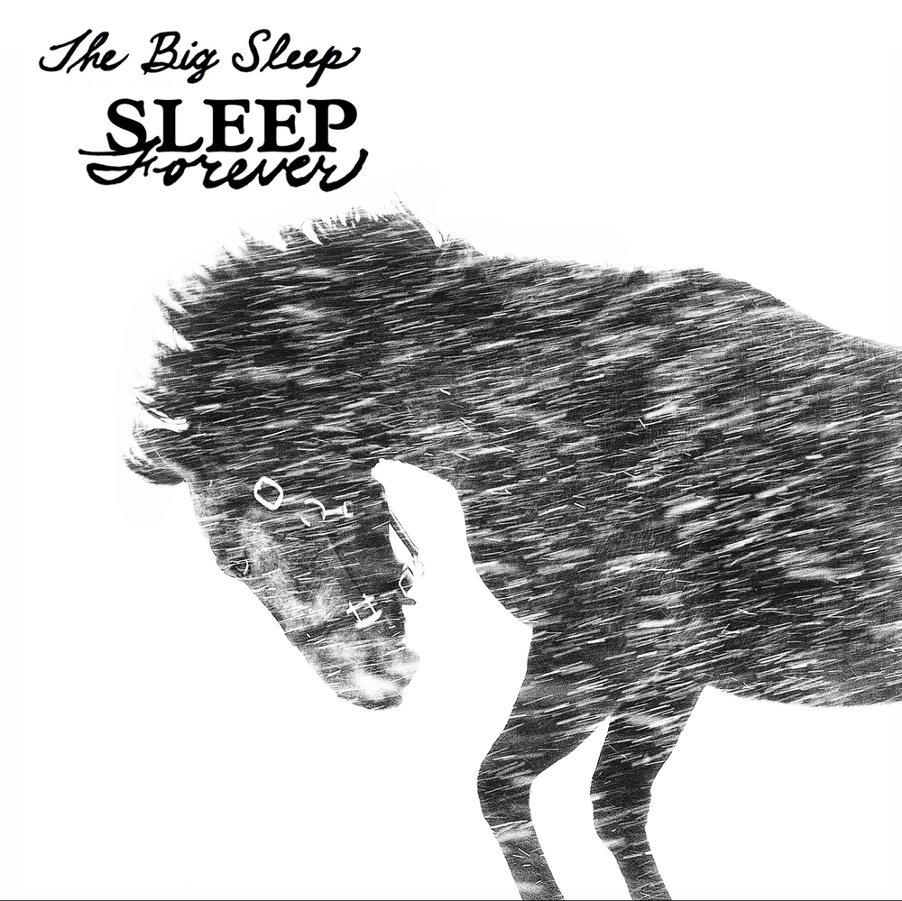 THE BIG SLEEP   SLEEP FOREVER   #FKR032   iTunes