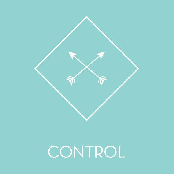 control-01.jpg