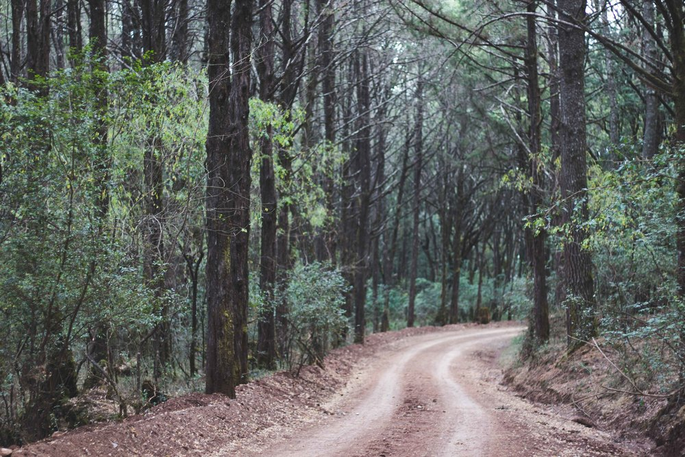 Managesha,Ethiopia