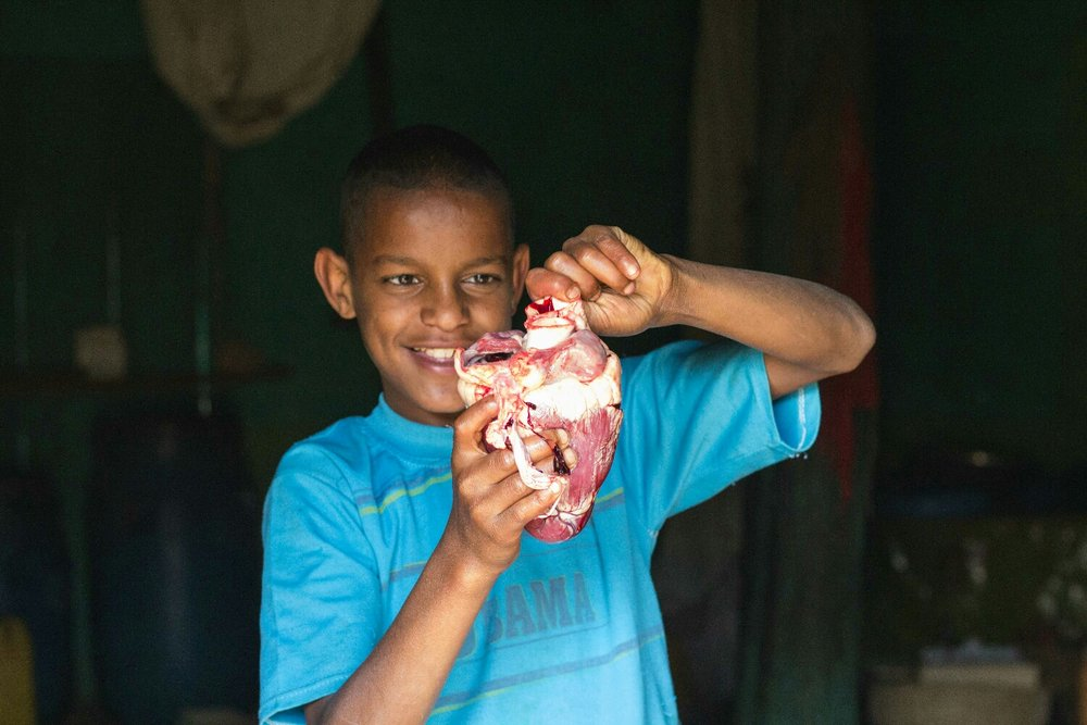 Here's my little bro with an actual cow heart. This is right after fasting was over for the orthodox Christians so they slaughtered a cow and shared with the neighbors. But look at shirt #obama