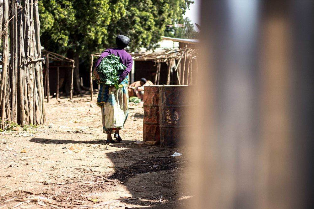 Ethiopia 2016 Peace Corps -21.jpg