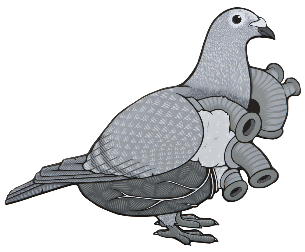 7) THE HEART PIGEON